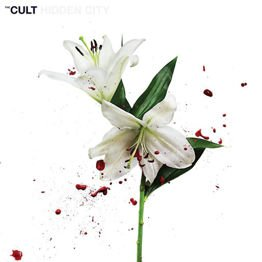Hidden City (2 LP + Download Card)