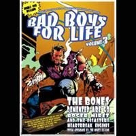 Bad Boys For Life vol. 3 (2 DVD)